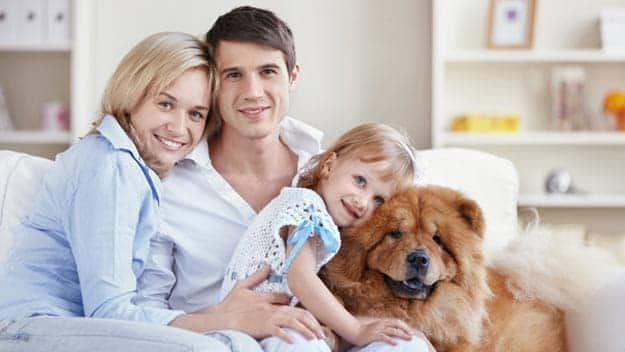Wills & Trusts dog-young-family Direct Wills Bexleyhill